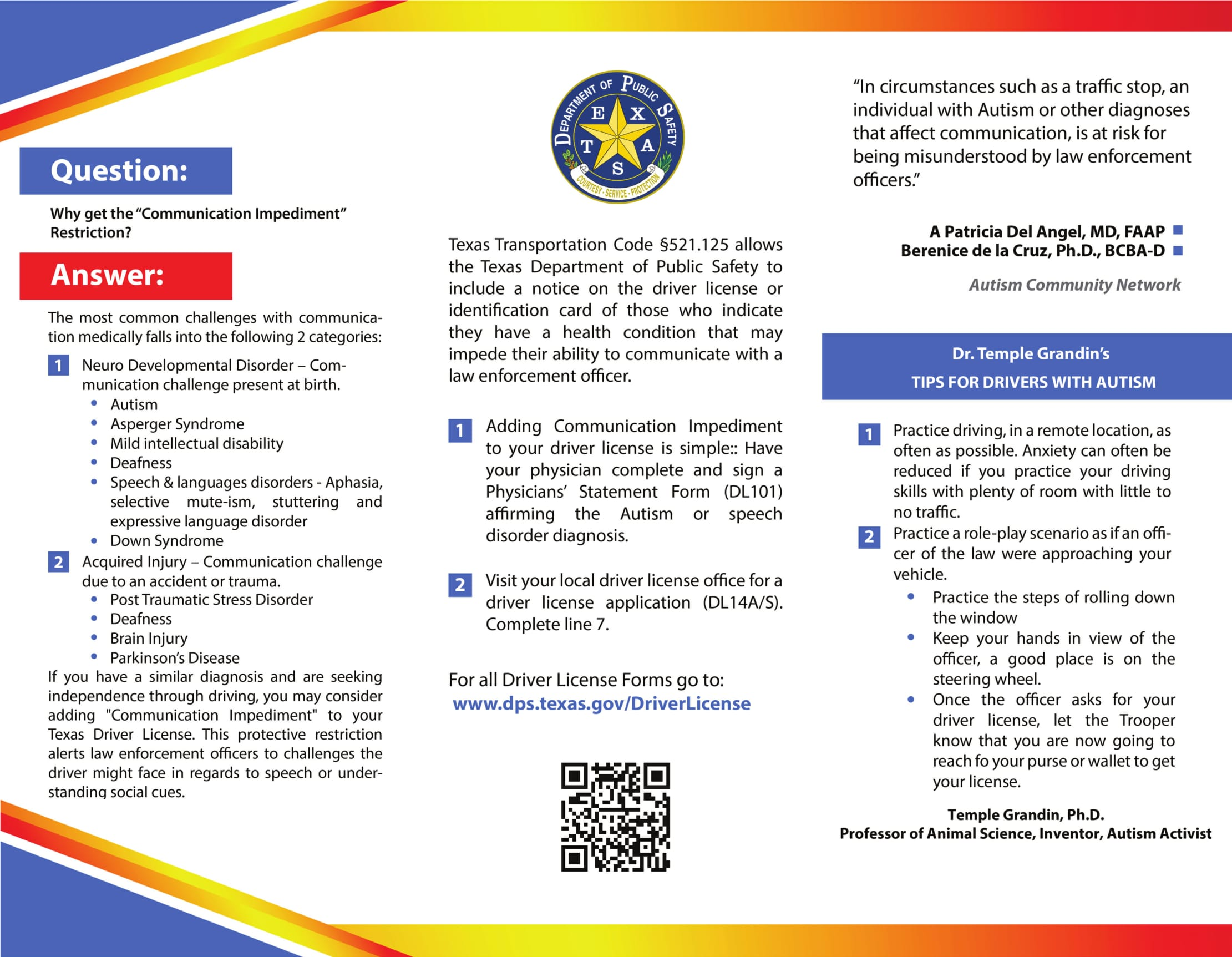 Driving-with-Autism-DPS-Brochure-1